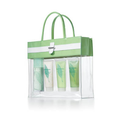Elizabeth Arden Green Tea Perfume Gift Set For Women EDP 100ml (bonmua HPE-EA1B2)