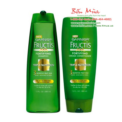 Garnier Fructis Shampoo & Conditioner Triple Nutrition For dry to over-Dried or Damaged Hair / Total Value 1.5L (4mua HSC-SHGA4)